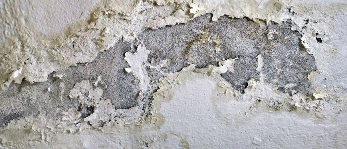 Casa con humedad stunning la humedad es un problema muy - El fontanero en casa ...